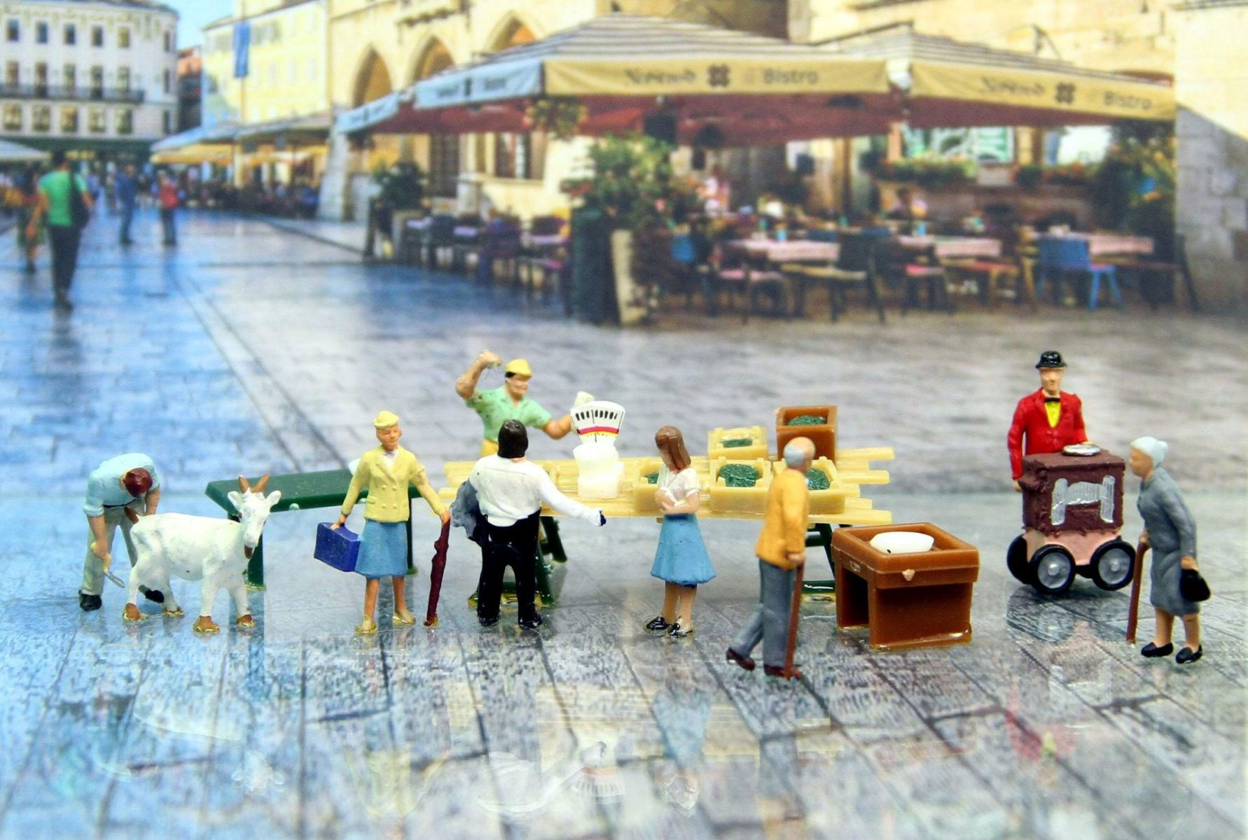 market-day-4026488