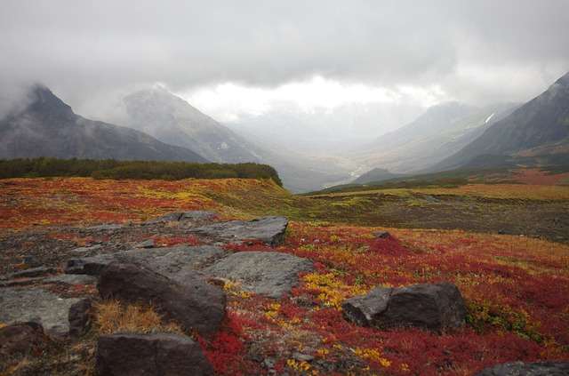 mountain-tundra-2761663_640